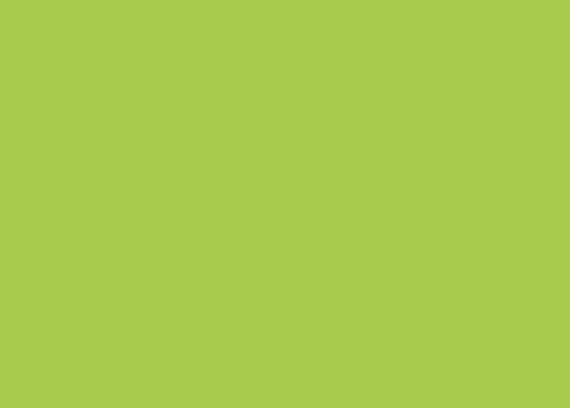 Зеленый лайм Egger