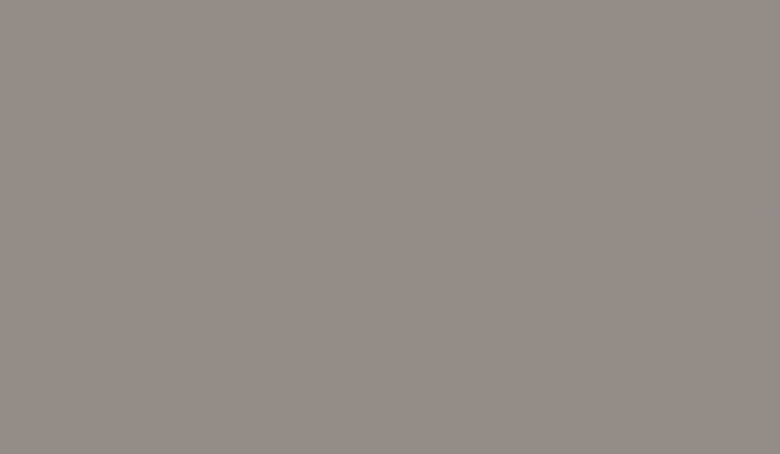 Арктика серый Egger